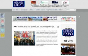 Hermes Expo website case study